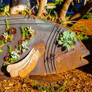 2016 A Succulent Piece of Fish by Scott Michell
