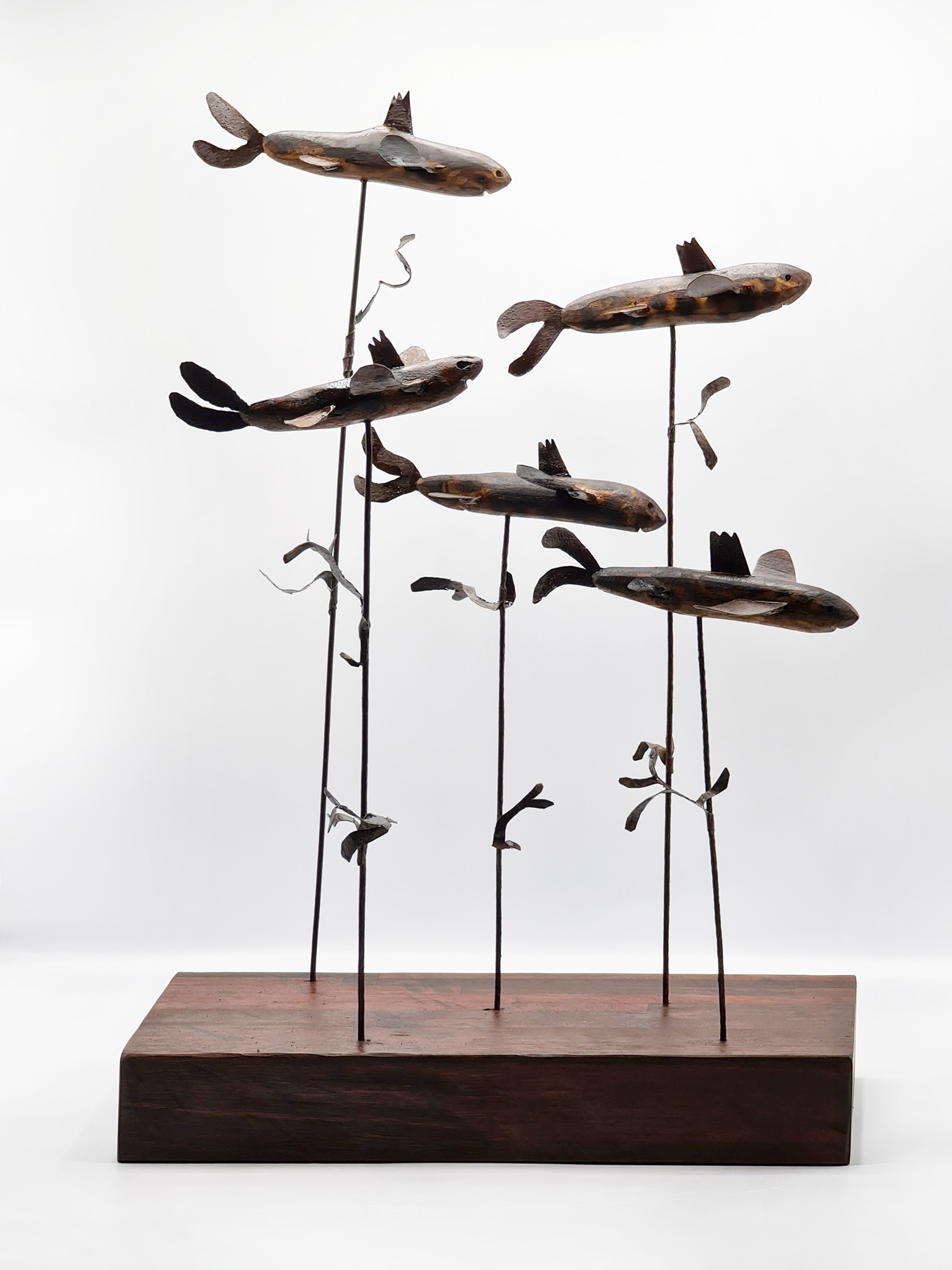 Flying Fish Fantastical by Anne Gee and Alan Meyburgh